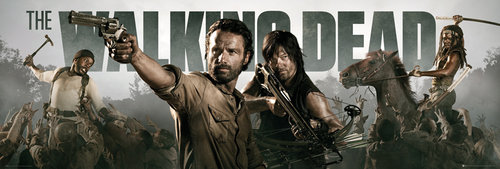 Póster Walking Dead Banner