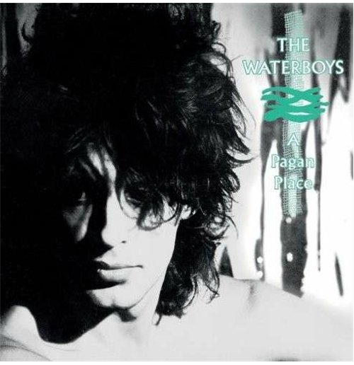 Vinil Waterboys (The) - Pagan Place