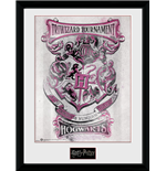 Mouldura Harry Potter 252677