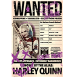 Póster Suicide Squad - Harley Wanted