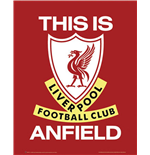 Póster Liverpool FC - This Is Anfield - 40x50 Cm