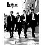 Poster Beatles 261344