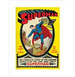 Poster Superman 271571