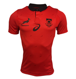 Camiseta África do Sul Rugby 2017-2018 Away